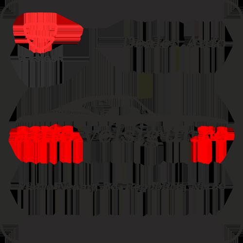 auto.velsigur.ro
